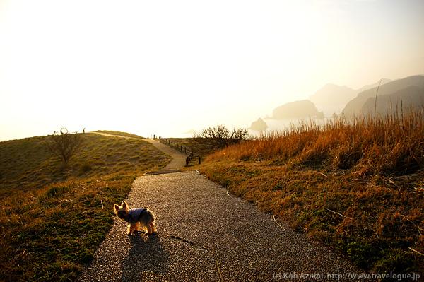 奥石廊の丘の上
